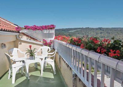 vistas desde terraza pension o pedrouzo
